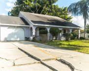 3021 Sunset Beach Drive, Venice image
