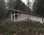 120 E Forest Dr, Belfair image