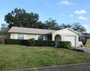 14507 Markland Greens Place, Tampa image