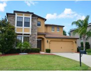 868 Crooked Branch Dr Drive, Clermont image