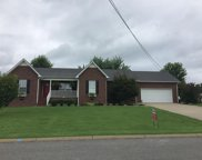 307 Brooklyn Circle, Shelbyville image