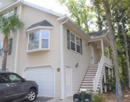 35 Brittany Place Unit #22, Hilton Head Island image