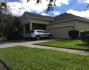 13214 Zori Lane, Windermere image