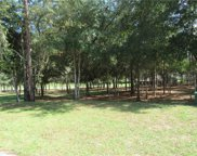 0000 Sw 194th Circle, Dunnellon image