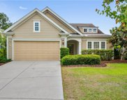 14 Tipo White Ct, Bluffton image