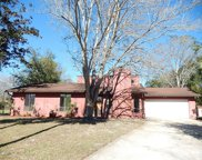 2804 CANYON CT, Orange Park image