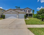 15169 Moultrie Pointe Road, Orlando image