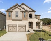 11233 Hill Top Bend, Helotes image