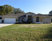 3506 Country Creek Lane, Valrico image