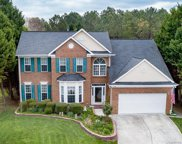 11132  Red Spruce Drive, Charlotte image