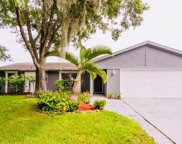 5825 Silver Moon Avenue, Tampa image