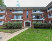 10113 Old Orchard Court Unit 203, Skokie image