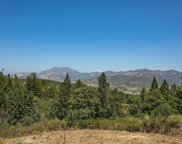 1511 Diamond Mountain Road, Calistoga image