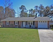 3107 Ray Ln, Conway image