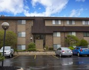 1441 Wildflower Way Unit 210, South Bend image