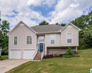 5501 Pearl Dr, Bessemer image