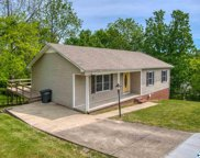 501 Hillview Blvd, Fayetteville image