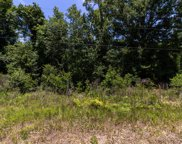 1891 OPENWOODS RD, Middleburg image