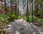 25230 Lodge Road, Idyllwild image
