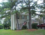 264 Mossy Oak Way, Mount Pleasant image