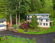 14528 274th Ave SE, Issaquah image