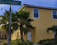3000 Bird Of Paradise Lane, Kissimmee image