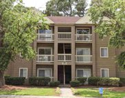 320 Myrtle Greens Dr. Unit B, Conway image