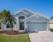13278 Early Frost Circle, Orlando image