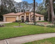 1330 Deer Lake Circle, Apopka image