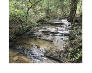 L 25 Gold Creek, Blairsville image
