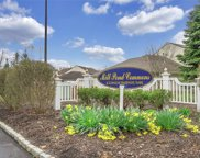 37 Blueberry  Commons, Riverhead image