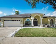 10014 Colonnade Drive, Tampa image