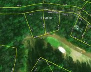 133 and 137 Fairway Woods Drive, Pickens image
