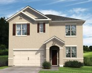 14031 Willow Grace Way, Orlando image