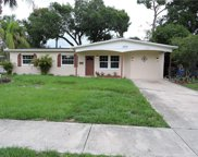 6007 Crest Hill Drive, Tampa image
