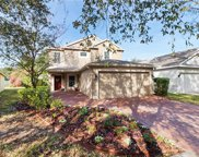 5847 Wrenwater Drive, Lithia image
