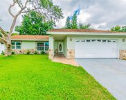 13720 Country Court Drive, Tampa image