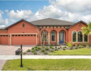 8220 Swiss Chard Circle, Land O Lakes image