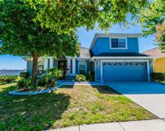 12512 Burgess Hill Drive, Riverview image