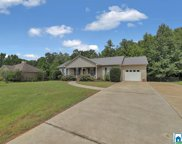 225 Crooked Creek Ln, Odenville image