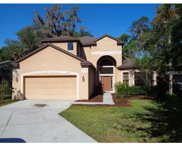 8817 Alafia Cove Drive, Riverview image