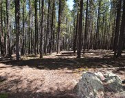 Fawn Trail, Evergreen image