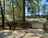 3028 Pine Shadow Trail, Columbia image