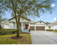 5831 Caymus Loop, Windermere image