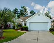 671 PEPPERBUSH DRIVE, Myrtle Beach image