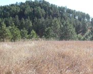 Custer image