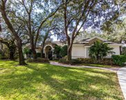15003 Eaglepark Place, Lithia image