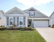 613 Ginger Lily Way, Little River image