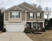 13800  Allison Forest Trail, Charlotte image