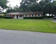 8317 W Forest Circle, Tampa image